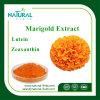 [لوو بريس] 100% طبيعيّ برتقالين 5%-98% [مريغلد] زهرة مقتطف [زإكسنثين] 5%, 20%, 40% [مريغلد]