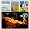 Polvo sin procesar esteroide Boldenone Cypionate CAS del Bodybuilding eficaz: 106505-90-2