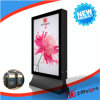 Zm 205 옥외 광고 가벼운 상자