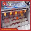 Orange und Mangofrucht Paralleld Pinsel-Rollen-Unterlegscheibe und paralleler Pinsel-waschendes Gerät