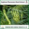Напряжение питания на заводе Sophora Flavescens корневой извлеките с помощью Sophocarpidine /Matrine/Oxymatrine