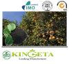 Fertilizzante organico economico e certo di Biochar per la scelta