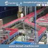 Machine d'embouteillage de jus de bouteille chaude d'animal familier remplissant chaîne de production complète