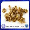 Precisione Small Brass Machining Service a Shenzhen
