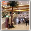 Palmeira artificial personalizada de Washington do vidro de fibra para a decoração pública