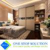 Weiße Luftschlitz-Schiebetür-Garderoben modularer Hoome Möbel-Wandschrank (ZY 2040)