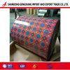 CGCC/PPGL /PPGI Feuille d'acier prépeint avec du polyester