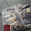 북태평양 동결된 오징어