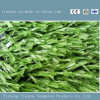 Дешевая лужайка цены широко используемая синтетическая для футбольного поля