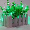 빛나는 녹색 주문을 받아서 만들어지는 타이머 기능 원격 제어를 가진 건전지에 의하여 운영하는 실내 옥외 방수 구리 철사 끈 빛