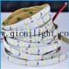 Buona dissipazione di calore dell'alta di Istruzione Autodidattica striscia di alto potere 2835 LED