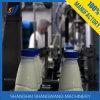 Chaîne de fabrication de yaourt chaud de vente/ligne production laitière