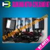 Adelgazar el kit OCULTADO/auto del xenón OCULTADOS (H7)
