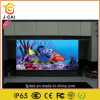 Diodo emissor de luz elevado Display de Brightness Outdoor P10 Full Color para Advertizing