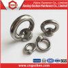 Stahl-HDG-Augen-nuß DIN582