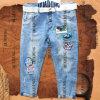 Disegno di modo e jeans delle signore rispettabili con la zona del panno (HDLJ0011)