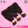 Vendas por atacado OEM/ODM/Drop que enviam a tecelagem brasileira disponível do cabelo humano