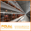 Автоматические клетки цыпленка слоя конструкции для пользы Jaula De Pollo цыплятины