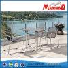 Silla al aire libre de lujo del metal del acoplamiento de los muebles del acero inoxidable