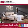 Nuevo diseño moderno dormitorio cama para uso (FB2103)
