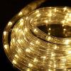 공장 가격 36LEDs/M LED 코드 밧줄 지구 빛
