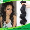 Het onverwerkte Hoogste Menselijke Haar van het Haar van de Kwaliteit 7A Indische Maagdelijke