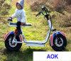 60V1000W электрический мотовелосипед, электрический приведенный в действие мотоцикл для взрослого (EM-055)