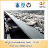 Resistant chimico Conveyor Belt con lo standard internazionale