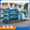 Gas natural trifásico del generador de potencia de la CA del profesional