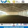 15mx30m Палатка Белый Marquee ПВХ для промышленного склада
