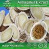 Выдержка Astragalus (Astragaloside IV 0.3% 0.5% 2% 5% 10% 98% 20%-80% полисахаридов)