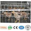 Клетки цыпленка оборудования полного комплекта/курятник цыпленка