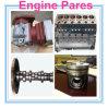 Deutz 1013년 Engine의 자동 Spares Parts Parts