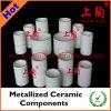 Composants en céramique métallisée