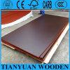 1220*2440mm Finger-Joint de madera contrachapada de color negro/marrón Film enfrenta la madera contrachapada