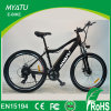 新しい山のスポーツEのバイク