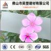 2mm Berijpt van het Polycarbonaat Stevig Blad Gekleurd PC- Blad met UVBescherming voor BinnenDeuren