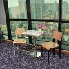 Resistente a arranhões e manchas cadeira de mesa fixado para o sector da restauração