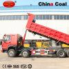 Het 10-wiel van de Vrachtwagen van de Stortplaats van de Mijnbouw HOWO Op zwaar werk berekende Kipper voor Verkoop