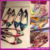 2015 بالجملة ينطلق/فصل صيف نساء [برينغتينغ] أحذية عرضيّ مسطّحة مريحة وقت فراغ أحذية الصين ممون ([ه-ك003])
