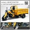 エジプトの販売のための安い価格の中国の製造者250cc Lifanの貨物三輪車