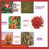 Légumes Fruits de la machine de séchage à air chaud bouteille