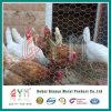 Maschendraht-galvanisierter sechseckiger Draht-Filetarbeits-sechseckiger Huhn-Maschendraht