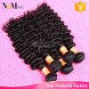 加工されていないブラジルのバージンの毛の深い波巻き毛の/Wetおよび波状のブラジルの人間の毛髪の織り方