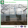 De Commerciële Plastic Serre van de landbouw