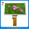 Módulo TFT LCD 7 polegadas de navegação automóvel, 40 pinos