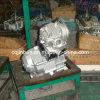 Moto Engine Gasoline/Petrol/Motor Cg200cc pour Moped Scooter (163FML)