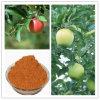 Apple sradica la polvere dell'estratto (JRG003)