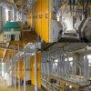 1日あたりの販売160tのための商業小麦粉の製造所