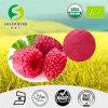 高品質の最上質の赤いラズベリージュースの粉、赤いラズベリージュースの粉の製造者、高品質の公式の即刻のフルーツ・ドリンクの粉、有機性ラズベリー